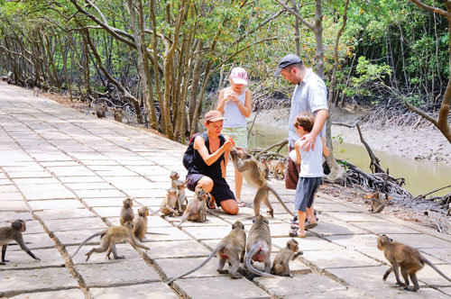 Tour Cần Giờ - Rừng Sác - Đảo Khỉ, Tour tham quan Cần Giờ