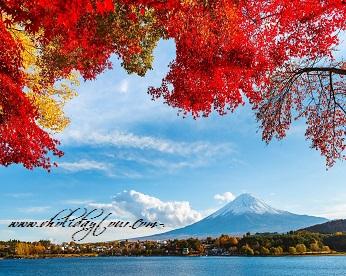 Tour Du lịch mùa thu Nhật Bản | Tokyo - Núi Phú Sĩ - Nagoya - Kyoto - Osaka - Nara (6n6đ)